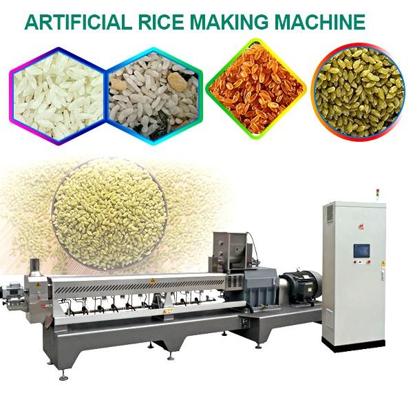 Continuously Artificial Rice Making Machine For Fortified Rice,Easy Operation #1 image