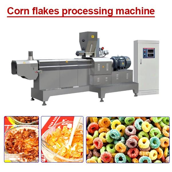 High Productivity Stainless Steel Corn Flake Machine With No Pollution #1 image