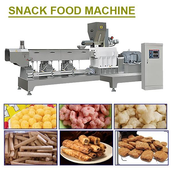 High Quality Twin Screw Extruded Snack Maker Machine,Low Cost #1 image